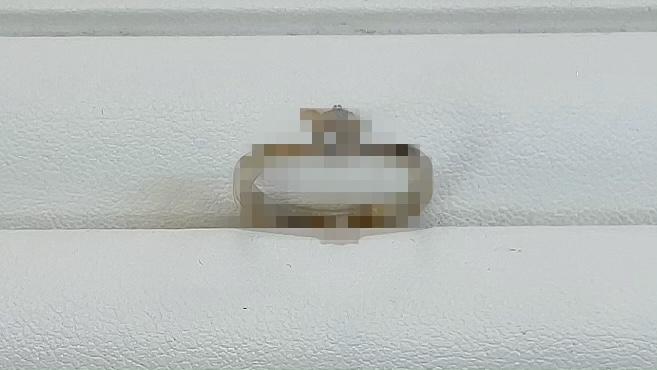 【買取速報】ダイヤモンド、婚約指輪・エンゲージリング、指輪-2021-06-03